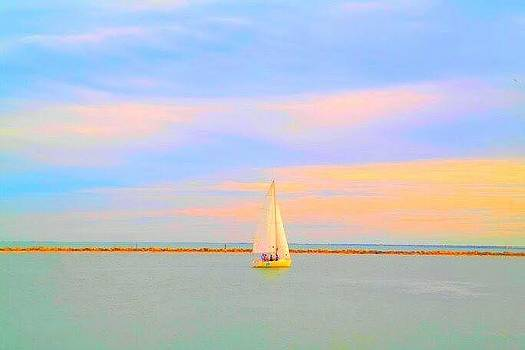 Sailboat Bay by  Renee McDaniel