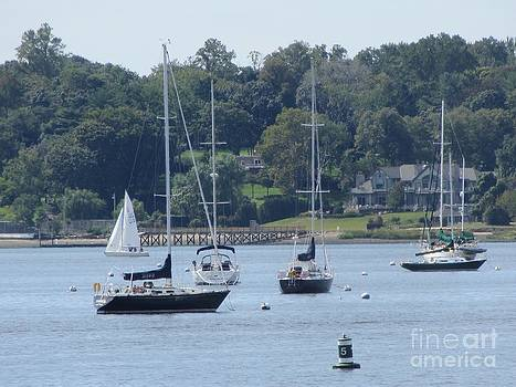 Sailboat Serenity by Debbie Nester