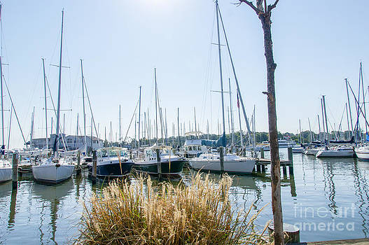 Sailboats on Back Creek by Charles Kraus