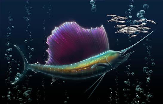 Sailfish by Bernadett Kovacs