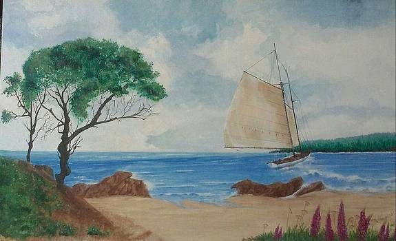 Sailing Boothbay Harbor Me by Tommy Rubel