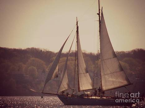 Sailing in Portlad Maine by Christy Beal