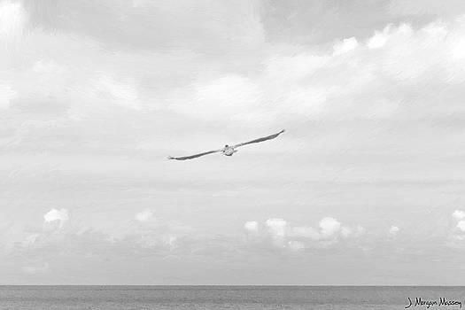 Sailing Sailing by J Morgan Massey