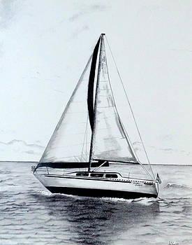 Sailing by Sharon Schultz