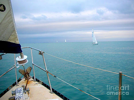 Sailing the Coral Sea by Sara  Meijer