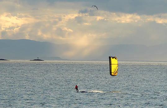 Sailing the seas by Karen Horn