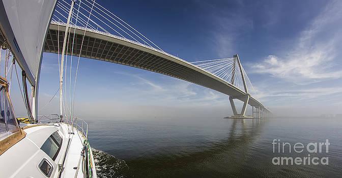Sailing Under the Ravenel Bridge Charleston SC by Dustin K Ryan