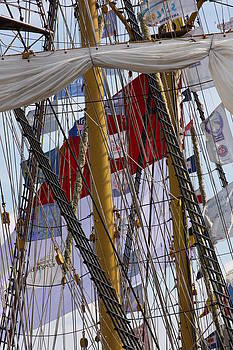 Sails in Norfolk by Michael Smith