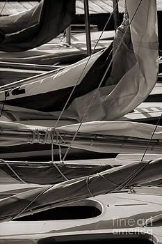 Jeff Breiman - Sails