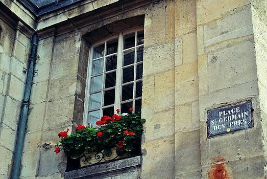 Saint Germain by Paris Color