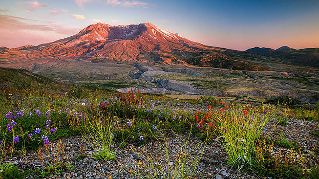 Saint Helens by Anthony J Wright