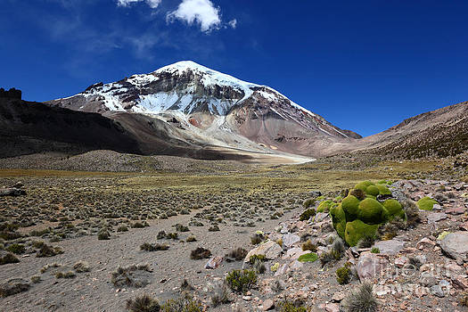 James Brunker - Sajama Volcano Bolivias Highest Mountain