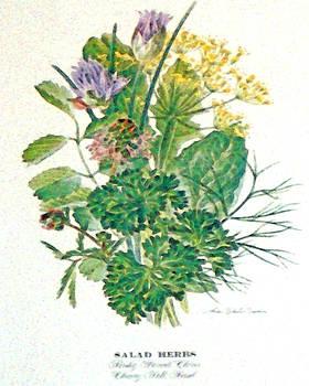 Salad Herbs by Wide Awake Arts