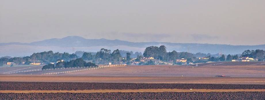 Salinas Valley by Elery Oxford