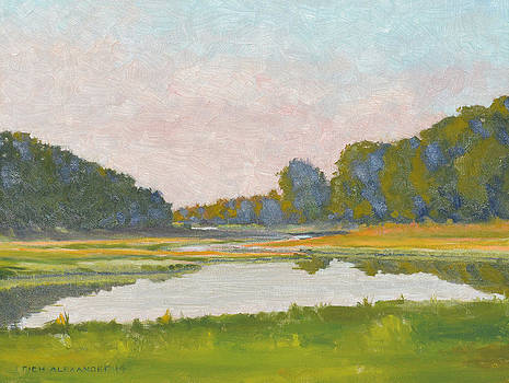 Salt Marsh  by Rich Alexander