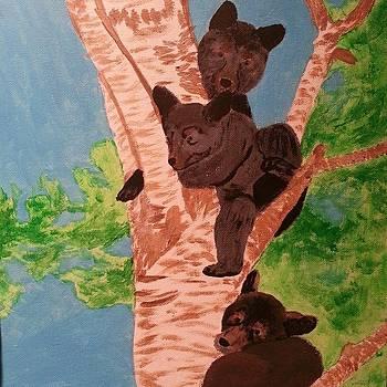 Sammy Bear's by Jody Benolken