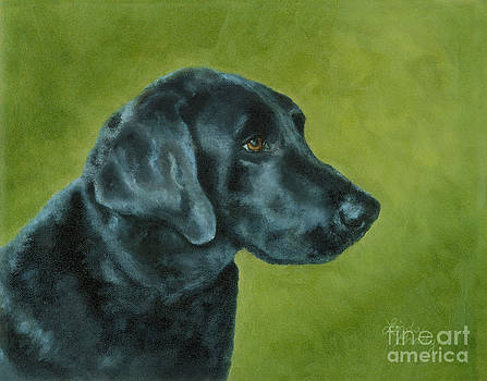 Sammy by Linda Grady