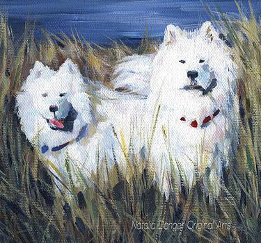 Natasha Denger - Samoyed Dogs