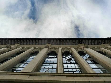 San Diego Looking Up by Tonie Cook