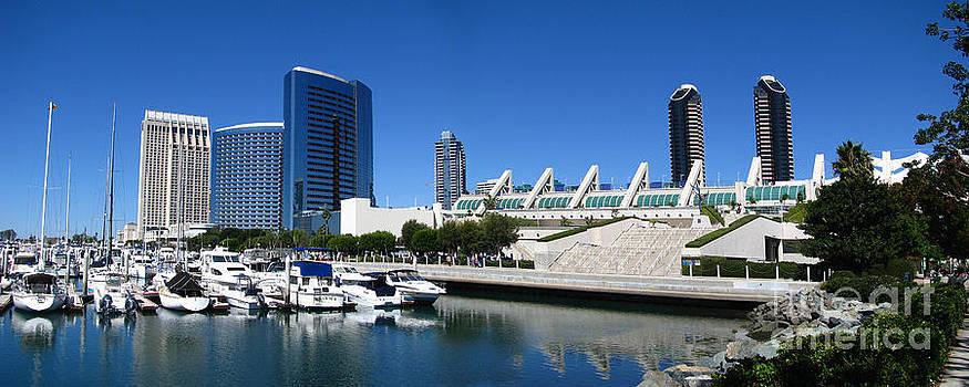 Bedros Awak - San Diego Panoramic View