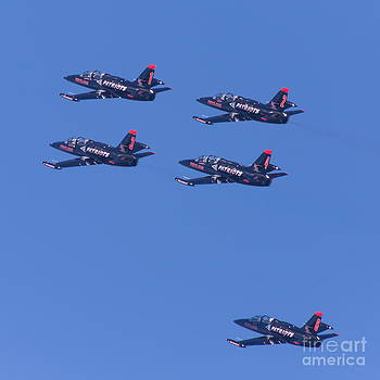 Wingsdomain Art and Photography - San Francisco Fleet Week Patriots Jet Team 5D29514