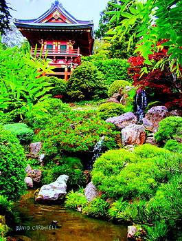 San Francisco Tea Garden by David Cardwell