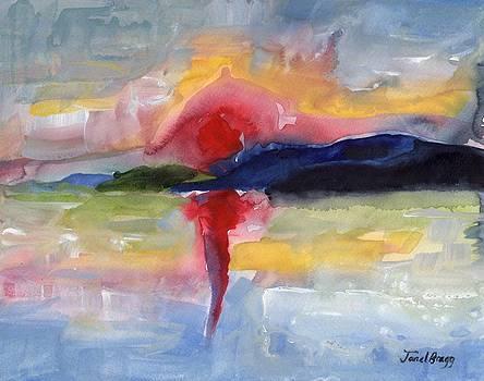 San Juan Island Sunset by Janel Bragg