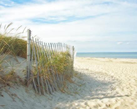 Sand Beach Ocean and Dunes by Brooke T Ryan