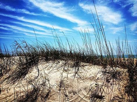 Sand Dune at Alantic Beach by Joan Meyland