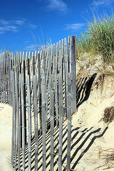 Carolyn Stagger Cokley - Sand Dune