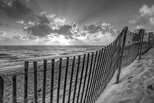 Debra and Dave Vanderlaan - Sand Dunes in Black and White