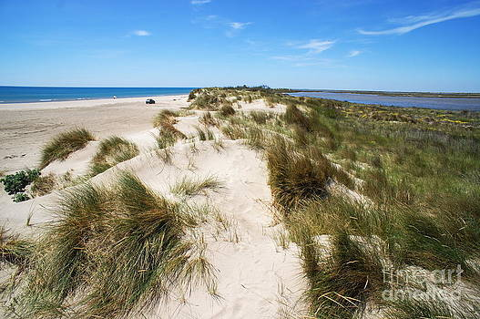 Sand dunes separation by Sami Sarkis