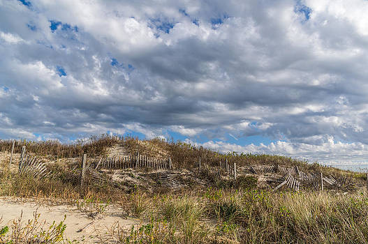 Sand Fence by Gregg Southard