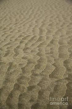 Charmian Vistaunet - Sand Ripples