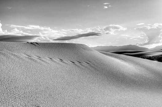 Sand Tracks by Eric John Galleries