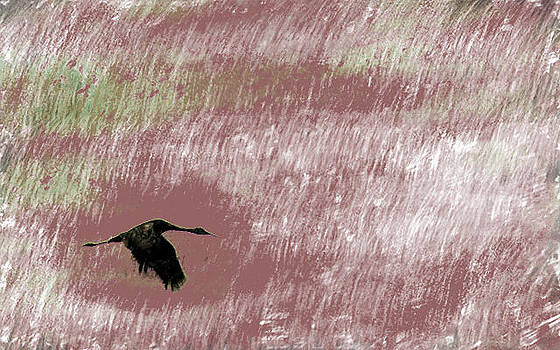 Sandhill Crane in Mauve by Eye Browses