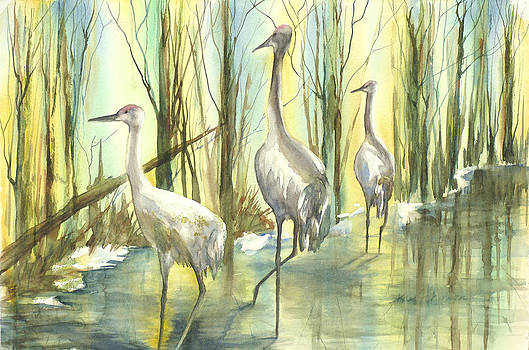 Sandhills by Kay Johnson