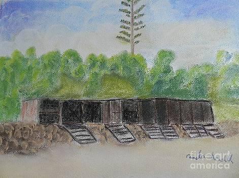 Sandon Point Boat Shed by Pamela  Meredith