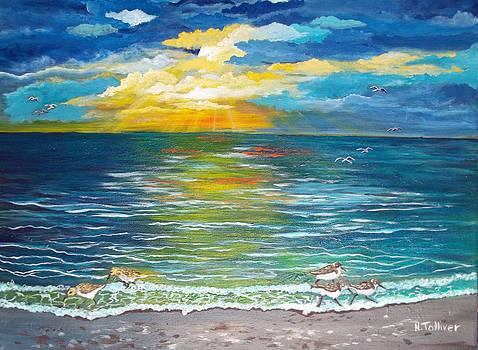 Sandpiper Sunrise by Norma Tolliver