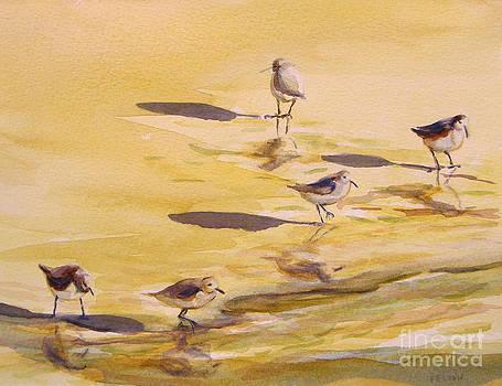 Sandpipers 5 by Julianne Felton