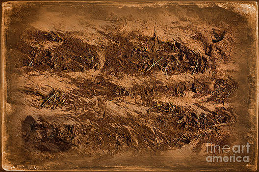 Sands Of Time by The Stone Age