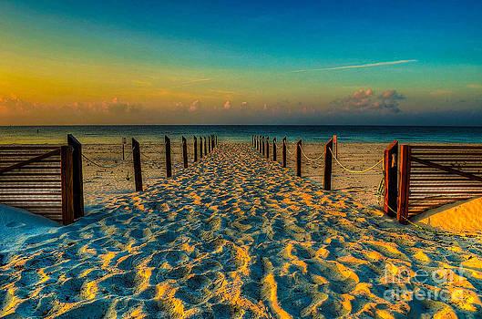 Sandy Beach by Maddalena McDonald