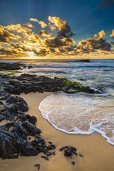 Sandy Beach Sunrise 10 by Leigh Anne Meeks