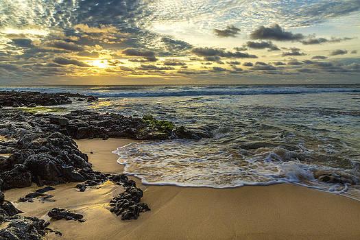Sandy Beach Sunrise 8 by Leigh Anne Meeks