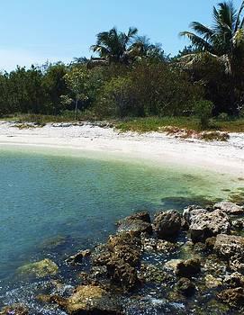 Sanibel Cove by Anna Villarreal Garbis