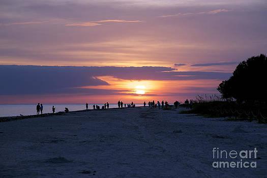 Sanibel Sunset #1 by Sandy Molinaro