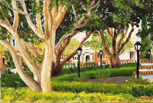 Santa Barbara by Blake Grigorian