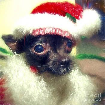 Santa Boy by Billie-Jo Miller