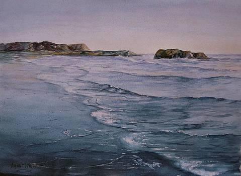 Santa Cruz Beach by Lynne Wright