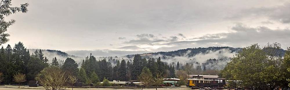 Santa Cruz Mountains After the Storm by Larry Darnell